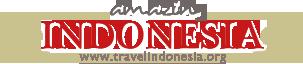 amazing indonesia