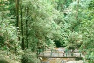 wisata alam Guruh Gemurai