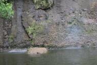 Kolam Air Terjun Resort Aka Barayun