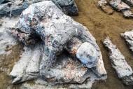 Batu Malin Kundang di Pantai Air Manis