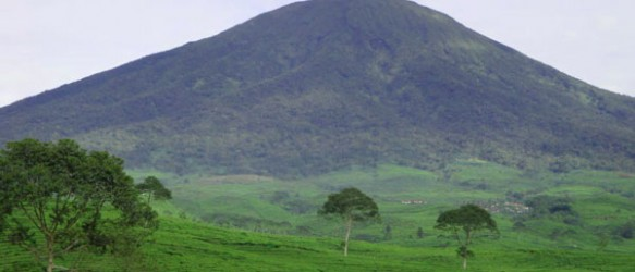 Gunung Dempo Bukit Barisan