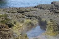 Salah Satu Sumber Air Panas Pantai Wartawan, Lampung