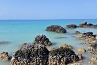 hamparan karang pantai tureloto nias sumatera utara